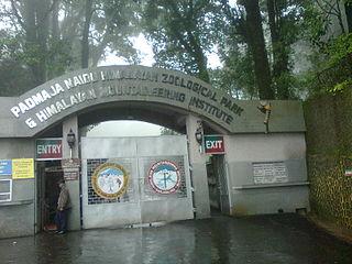 Padmaja Naidu Himalayan Zoo