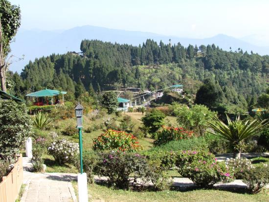 Dello Hills
