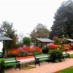 Nightingale Park