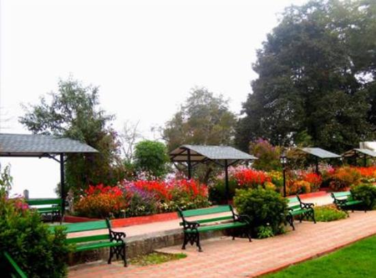 Image result for nightingale park darjeeling