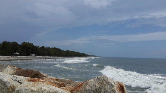Image result for azheekal beach