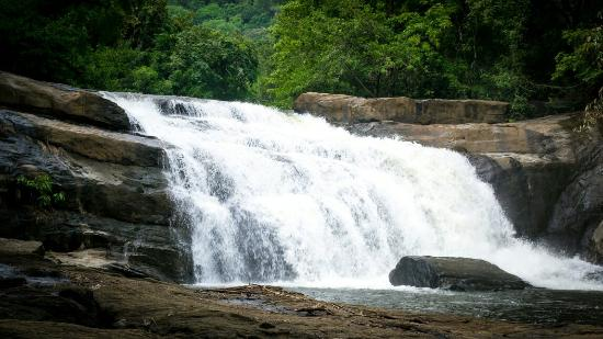 Thommankuthu water falls