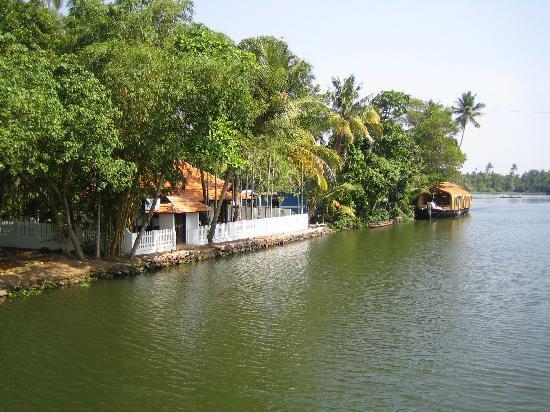 Backwaters of Kochi