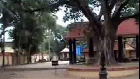 Thamaramkulangara Sree Dharmasastha